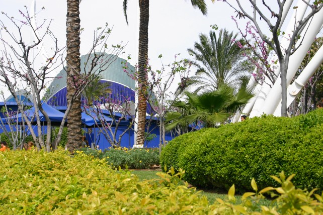 Walencja oceanarium i centrum nauki