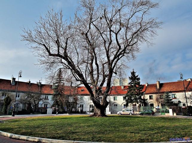 Warszawski Żoliborz