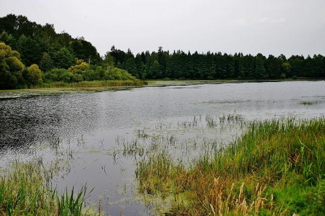 Zwiedzanie okolic Białowieży