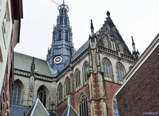 Haarlem Holandia