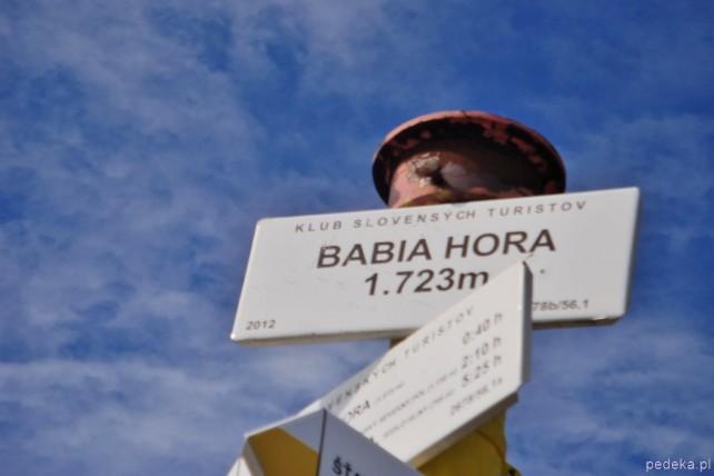 Z Przełęczy Krowiarki na Babią Górę