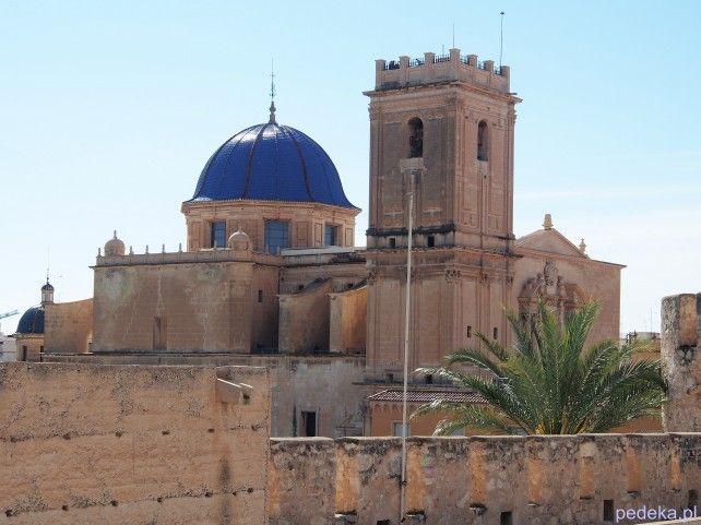 Elche katedra