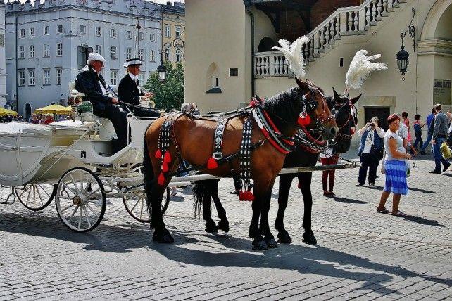 poznać Kraków
