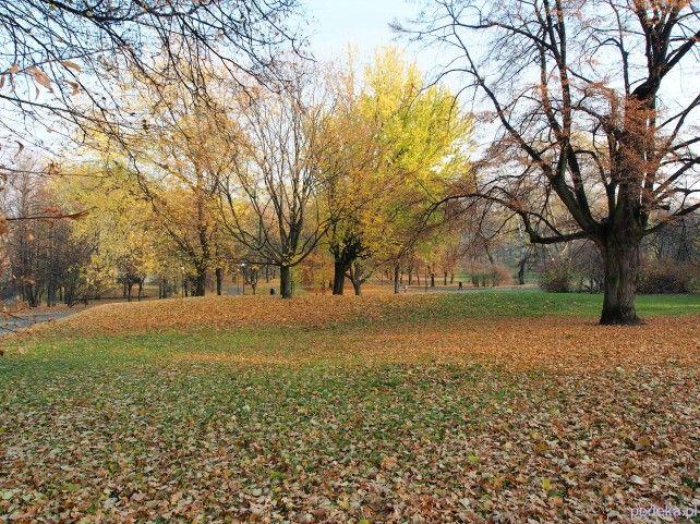 Warszawa Park Morksie Oko