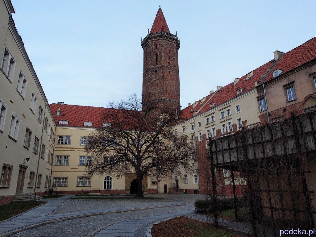 Zwiedzanie Legnicy, zamek