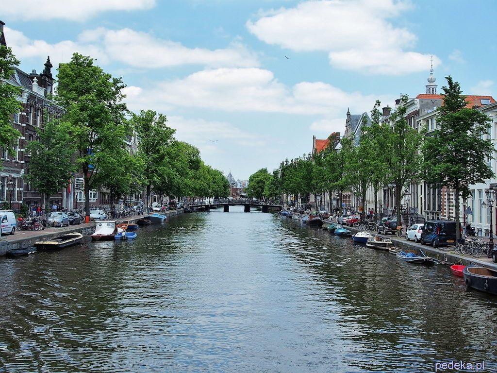 Gdzie pojechać w czerwcu, Amsterdam