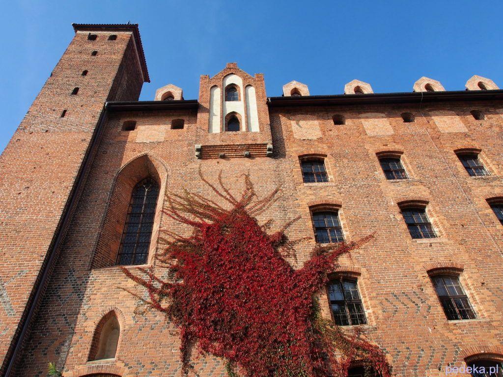 Zwiedzanie zamku w Gniewie