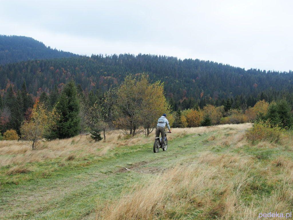 Główny Szlak Beskidzki: z Rabki na Turbacz