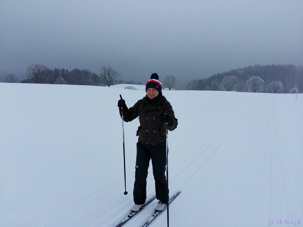 Leysin w szwajcarskich Alpach