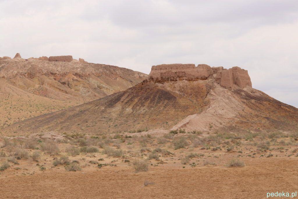 Wycieczka z Chiwy na Pustynię Kyzył-kum. Twierdza