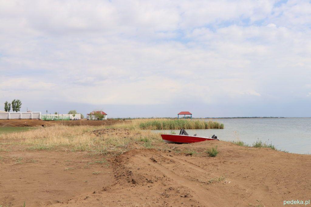 Wycieczka z Chiwy na Pustynię Kyzył-kum. Nad jeziorem