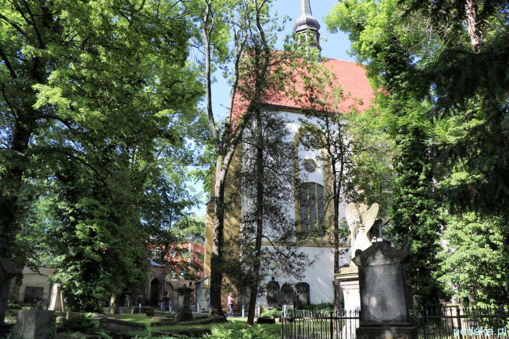 Żytawa, kościół, w którym jest Wielkie Żytawskie Płótno Wielkopostne