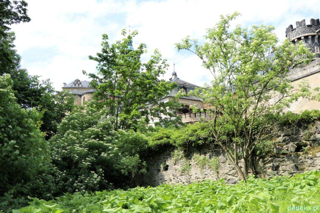Zamek Frydlant w Czechach. Zamek zza drzew