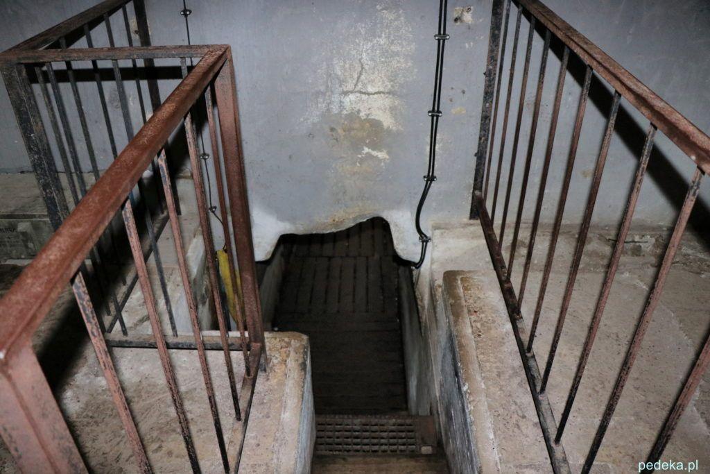Mamaerki. Wejście do tunelu