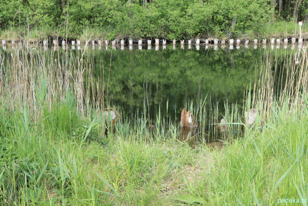 Węgorzewo, nad kanałem