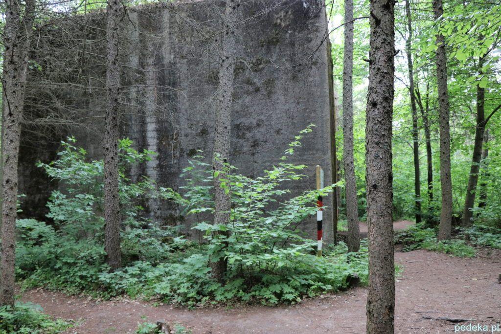 Mama=erki. Jeden z wielkich bunkrów, ukryty w lesie