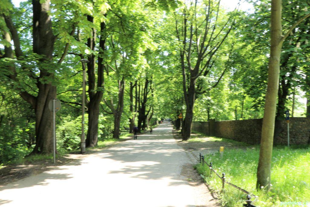 Krakowski Zwierzyniec. Droga na Kopiec Kościuszki