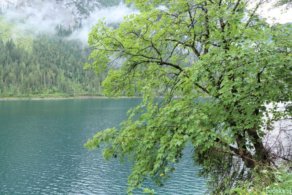 Jezioro odzyskało swoją turkusową barwę