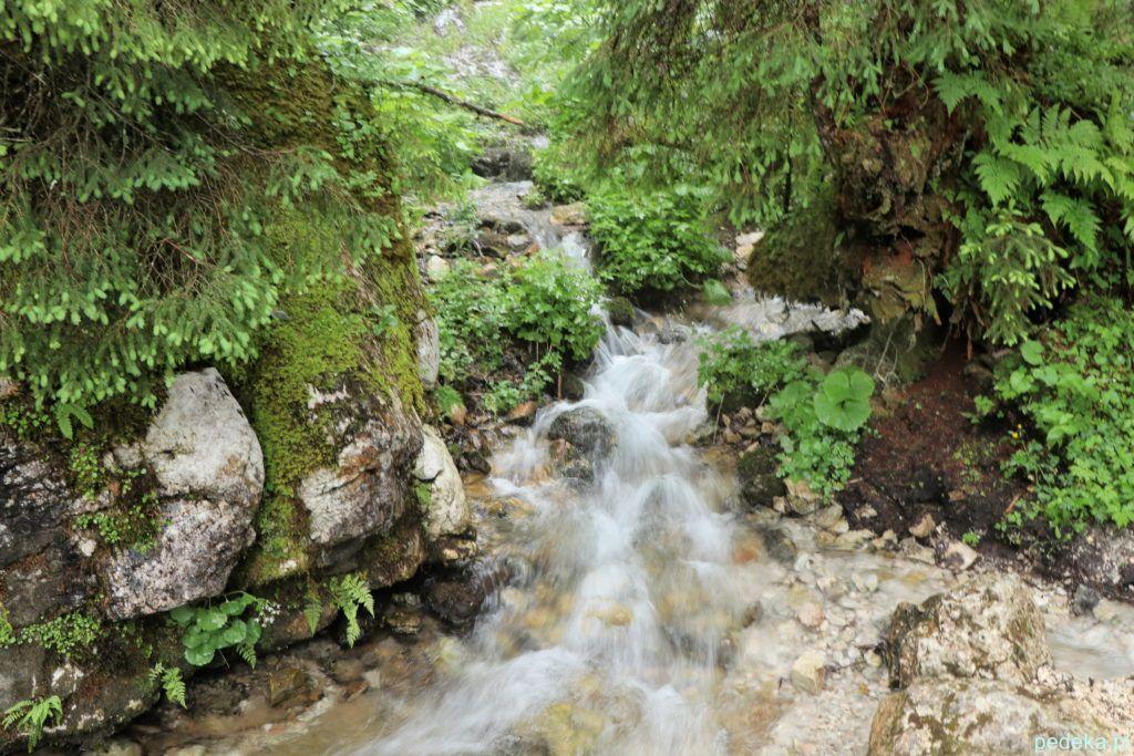 Wartki strumień lub wodospad