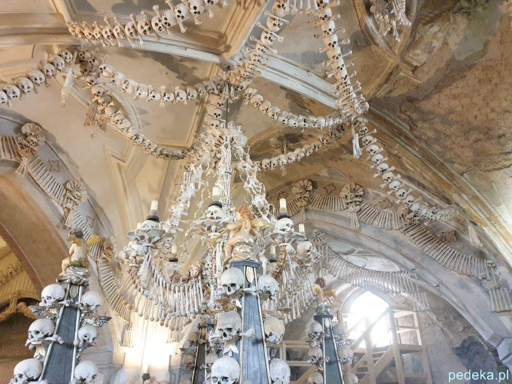 Wspomniany żyrandol z czaszek i kości