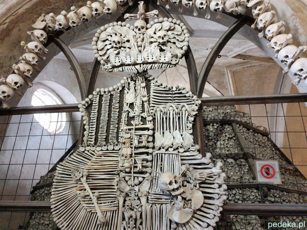 Herb z kości i czaszek