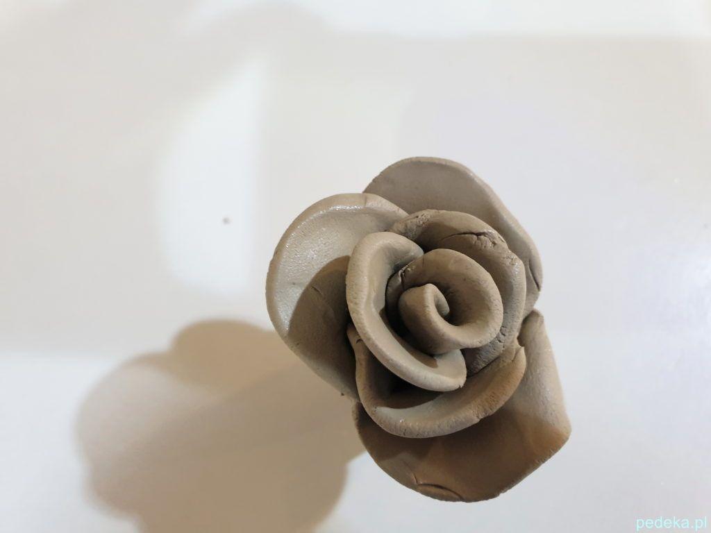 Gotowa róża