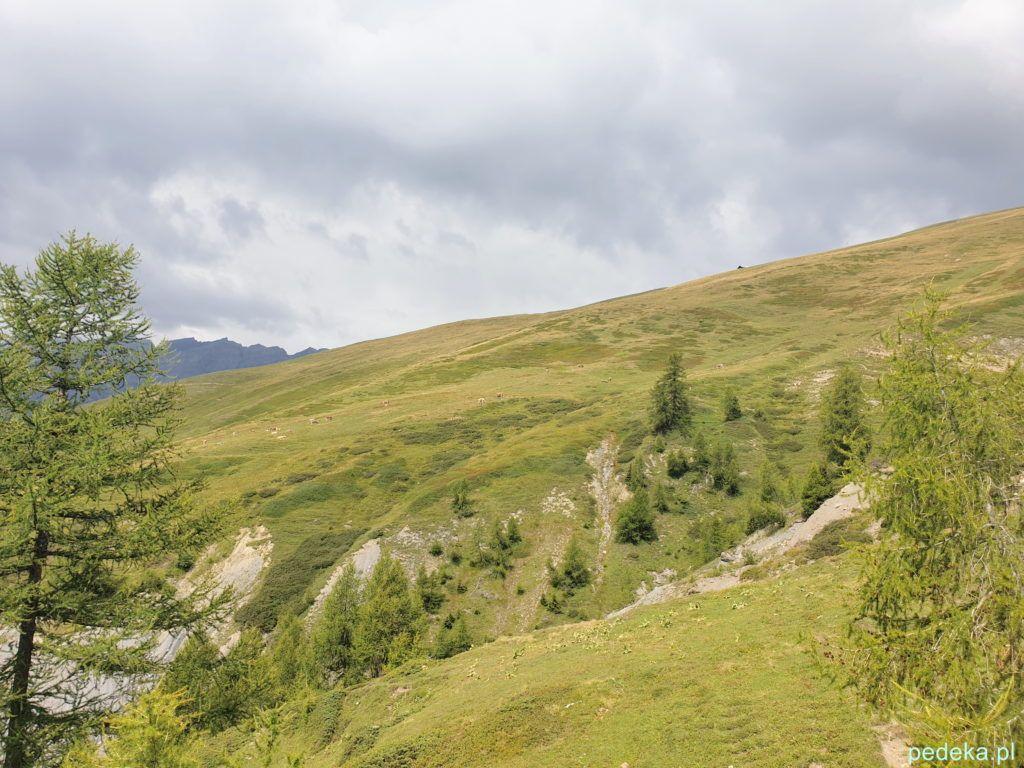 Wielka łąka i chmury, które nas trochę wystraszyły