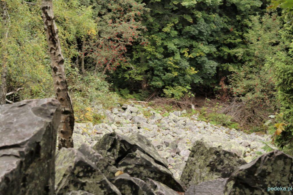 Kamieni kupa, czyli gołoborze