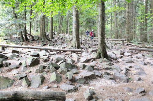 Kamienie na szlaku