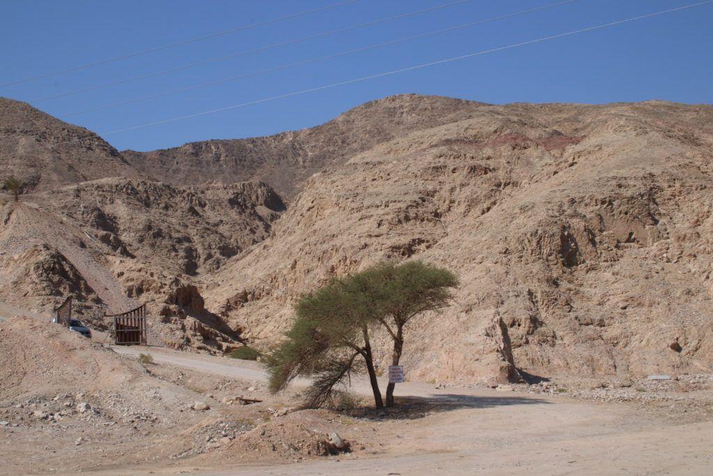 Z drugiej strony pustynia