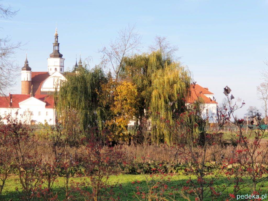 Supraśl monaster za drzewami