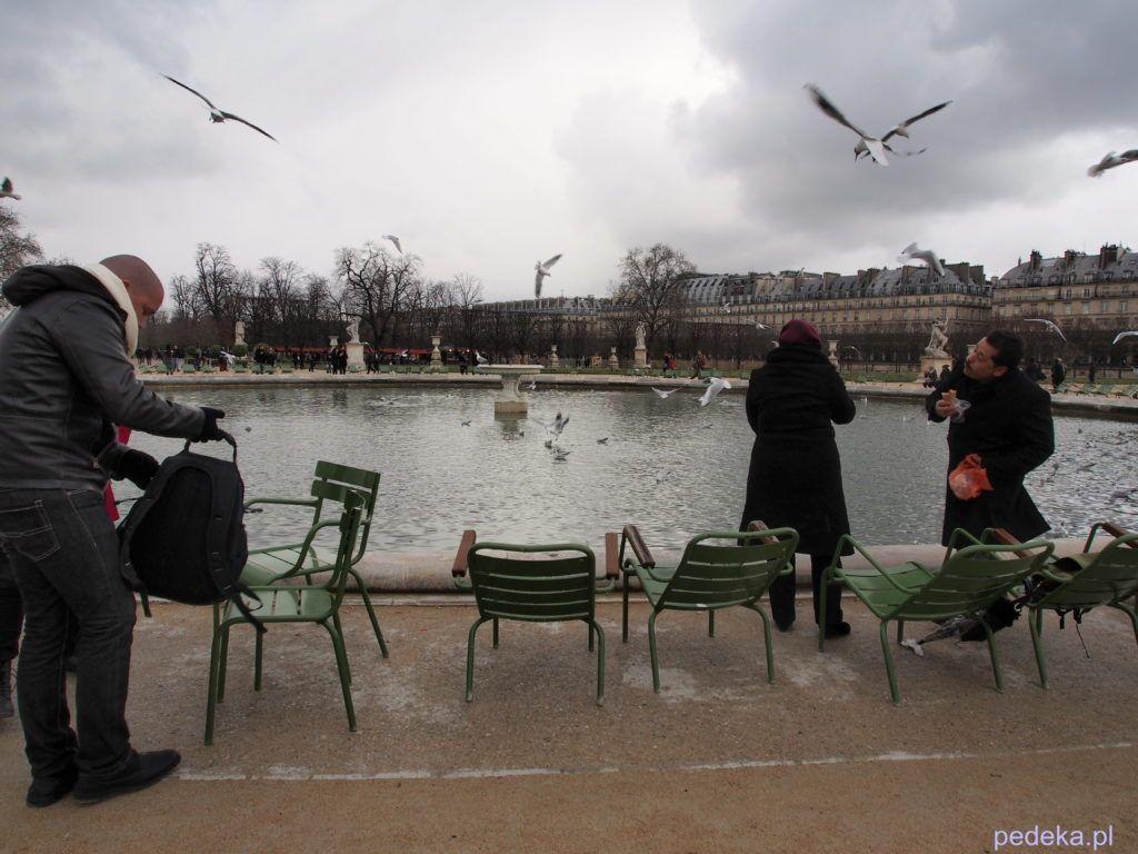 Jeden dzień w Paryżu. Jardin des Tuileries
