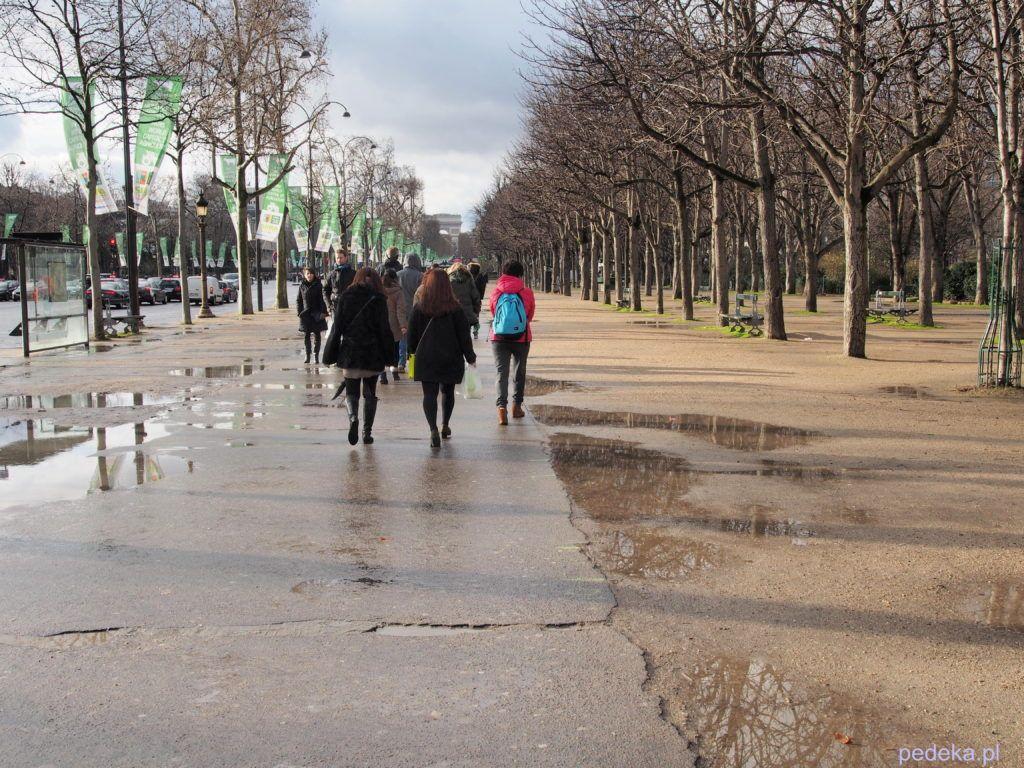 Paryż. Champs Elysees
