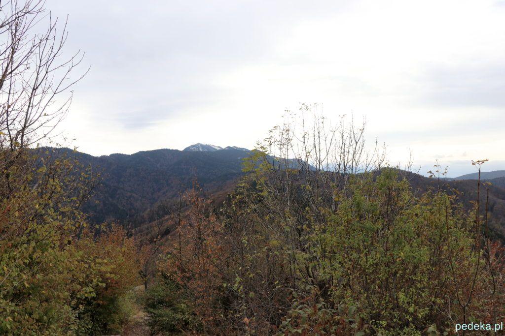 Braszów. Widok na góry