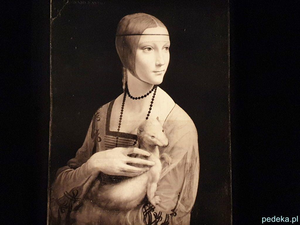 Leonardo da Vinci wystawa w Paryżu, szkic do obrazu Dama z Gronostajem