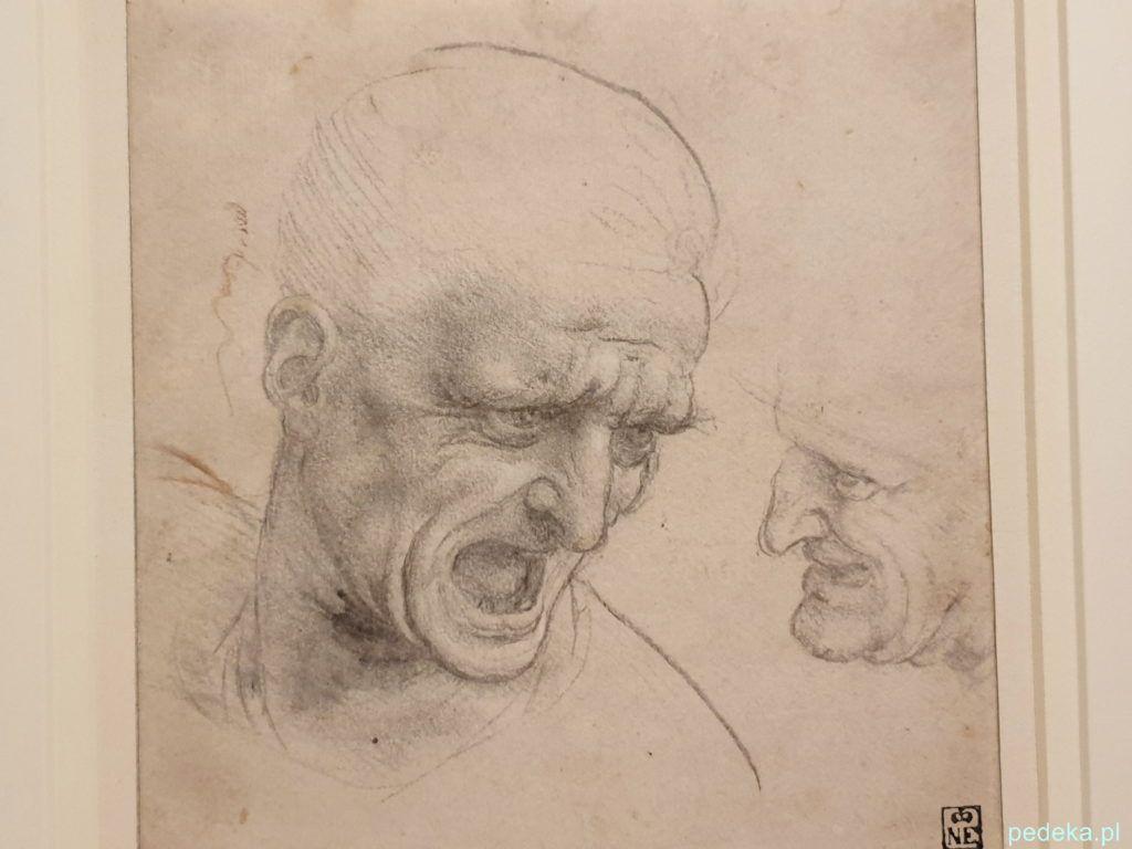 Leonardo Vinci wystawa w Paryżu. Szkic