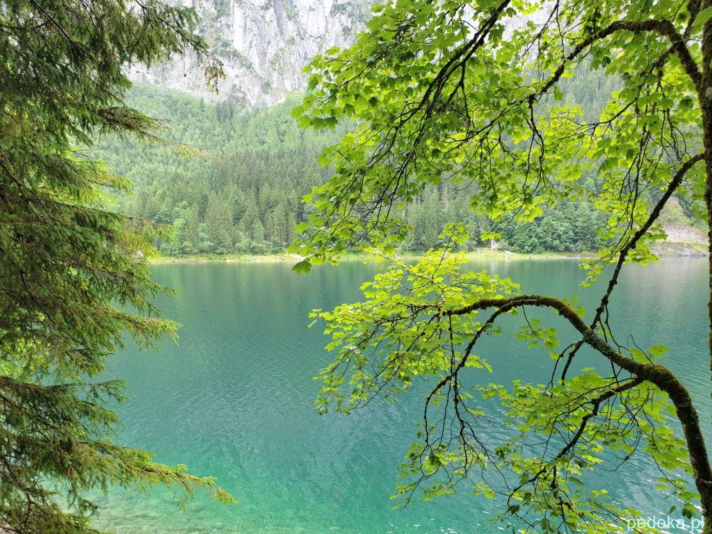 Alpy w okolicach Salzburga. Spacer wokół jeziora