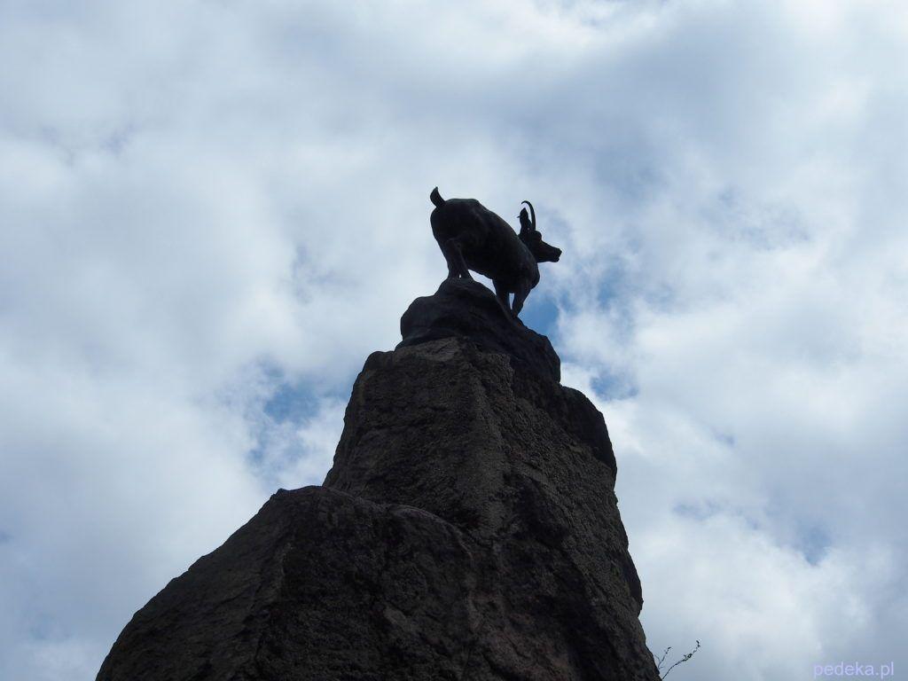 Pomnik kozicy