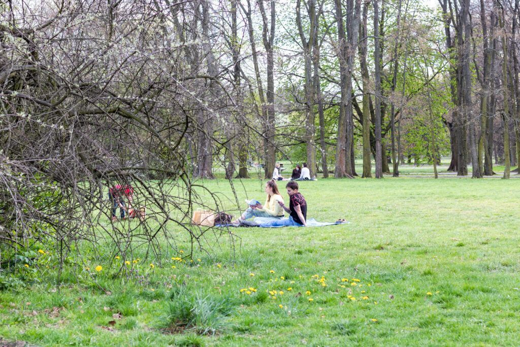 Piknik w trochę innym miejscu
