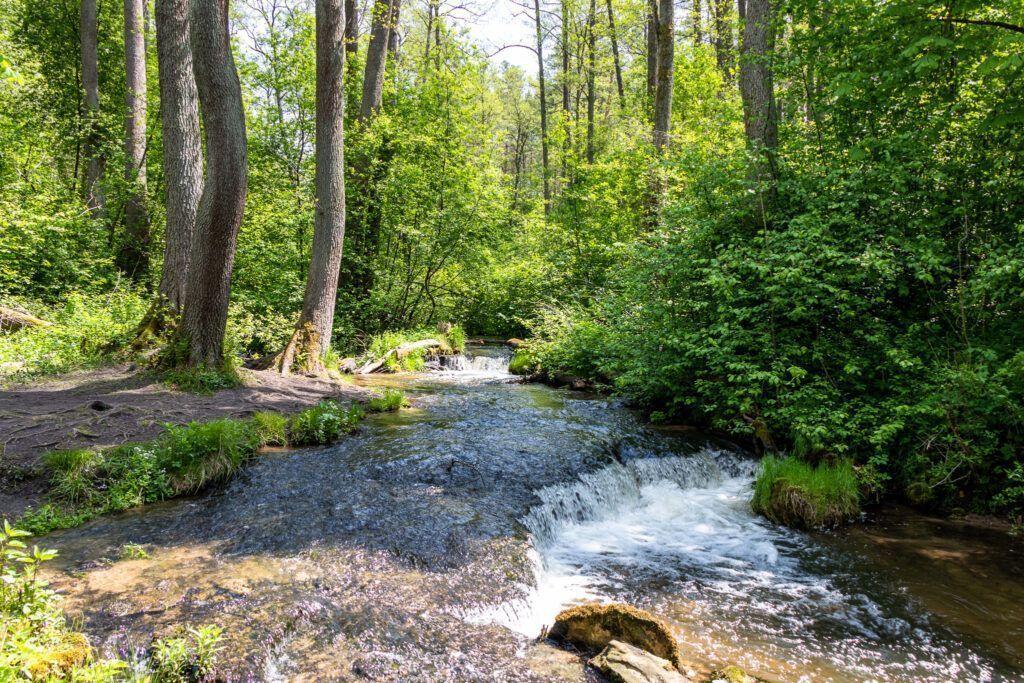 Szumy na rzece Sopot
