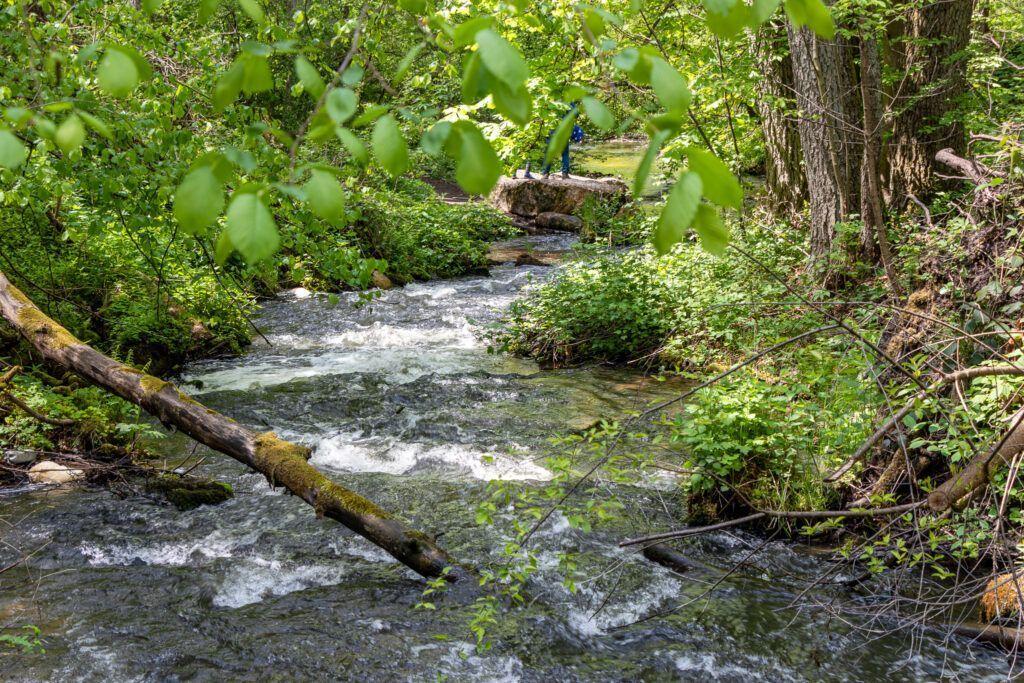 Czartowe Pole rzeka Sopot