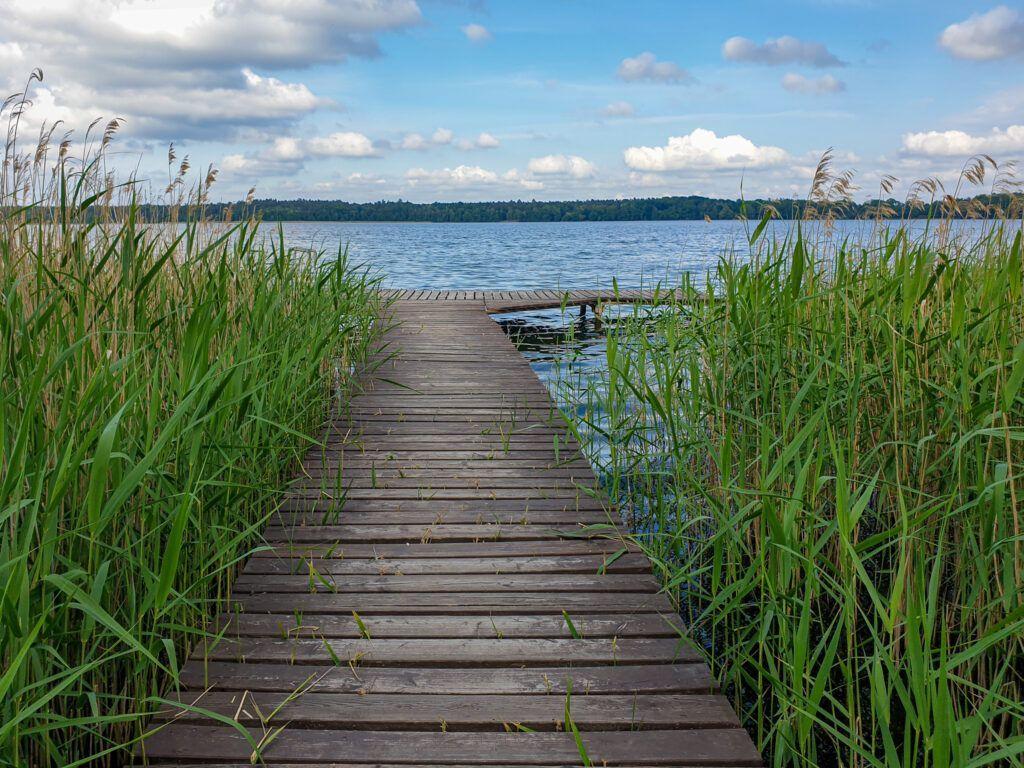 Moryń jezioro
