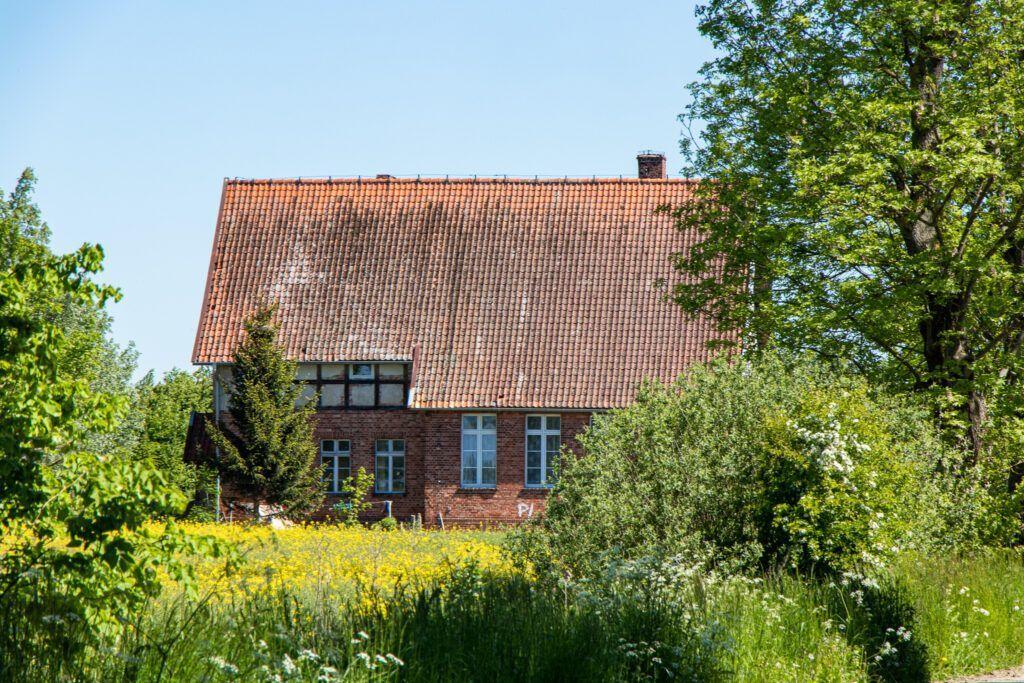Okolice Elbląga. Dom zatopiony w zieleni