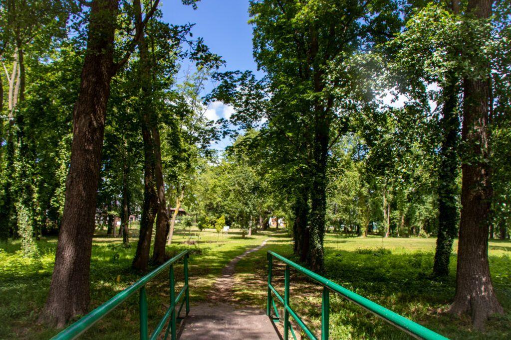 Trzcińsko-Zdrój. Dawny park zdrojowy