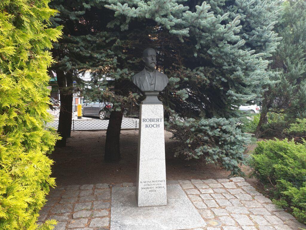 Pomnika Roberta Kocha
