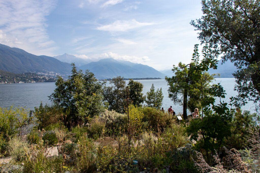 Wyspa Brissago. Ogród botaniczny i widok na jezioro