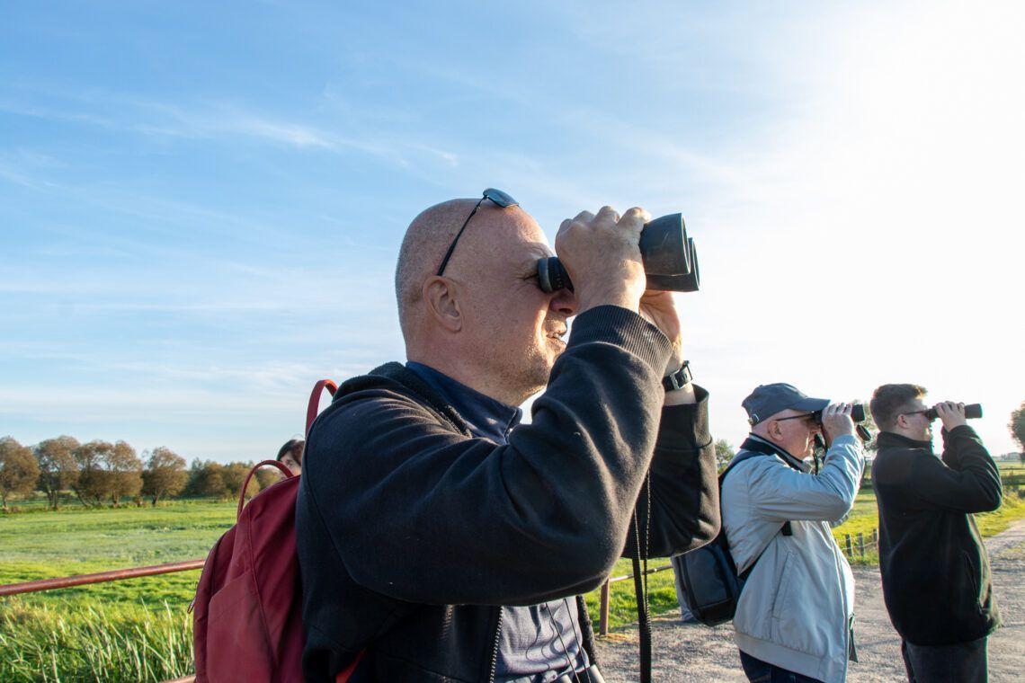 W poszukiwaniu ptaków