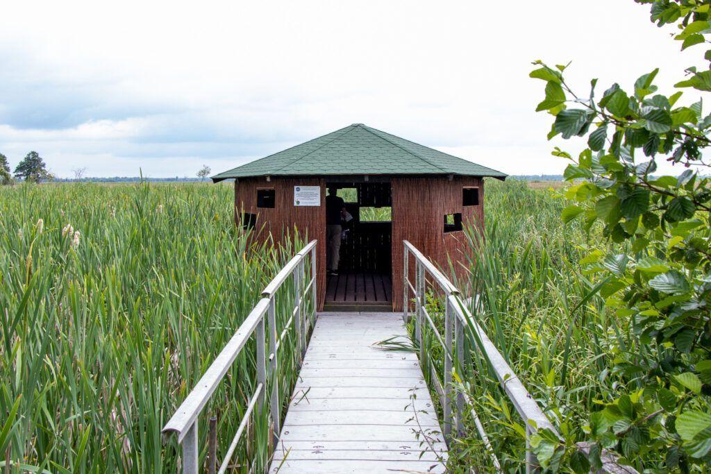 Weekend w Parku Narodowym Ujście Warty. Budka do obserwacji ptaków