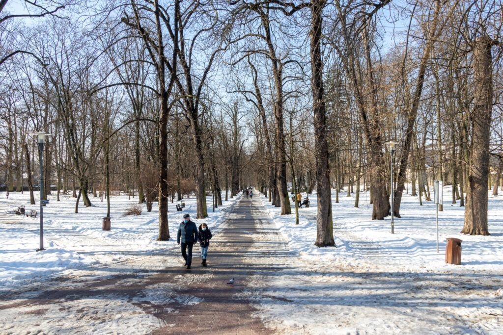 W parku Żeromskiego