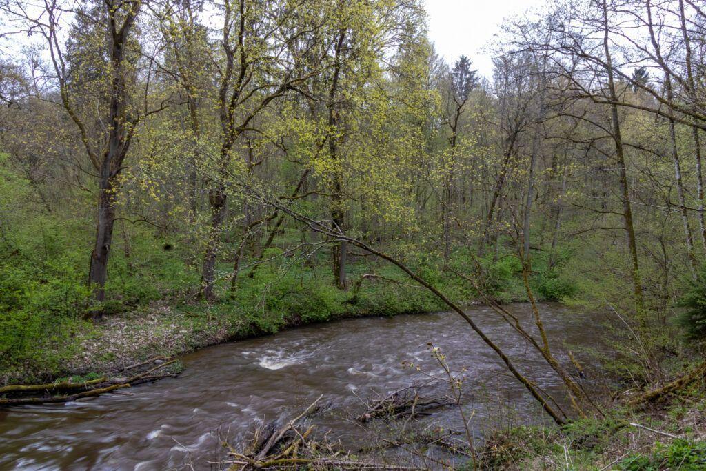 Dolina rzeki Wałszy. Wałsza